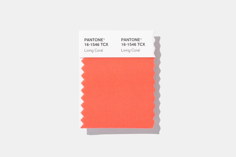 Pantone 2019 Color of the Year 16-1546 TPX Living Coral Mini Swatch