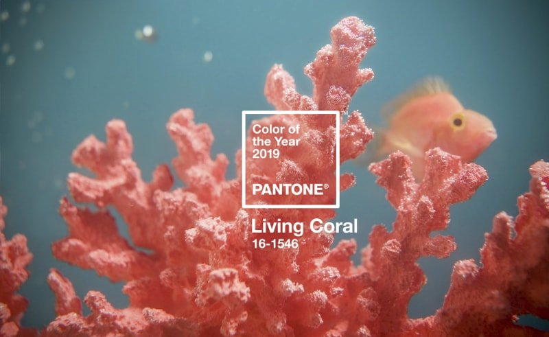 Pantone 2019 Color of the Year 16-1546 TPX Living Coral