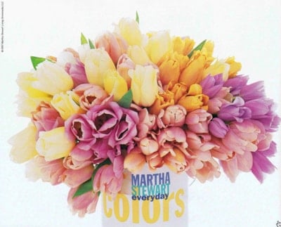 Martha Stewart Colors
